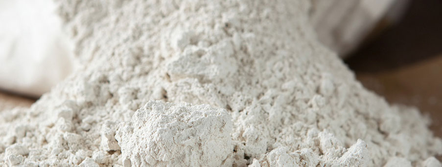 diatomaceous-earth-silica